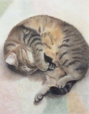 パステル画『猫-2』