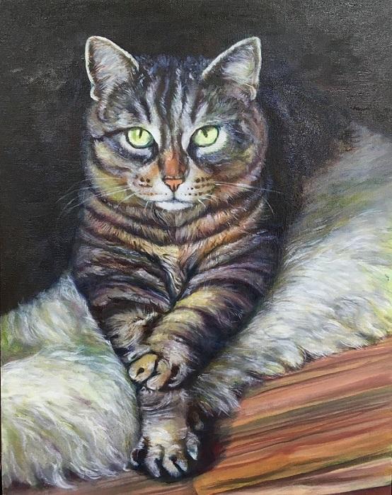 油絵作品『猫』