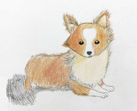 ジュニアクラス会員作品 色鉛筆画『子犬』