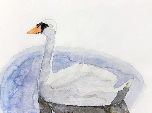 ジュニアクラス会員作品 水彩画『白鳥』