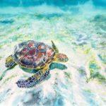 水彩画『ウミガメ』