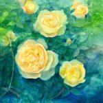 水彩画『バラ』